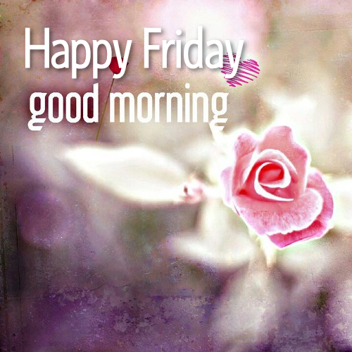 Happy Friday Good Morning Pictures, Photos, and Images for ... Good Morning Happy Friday Images