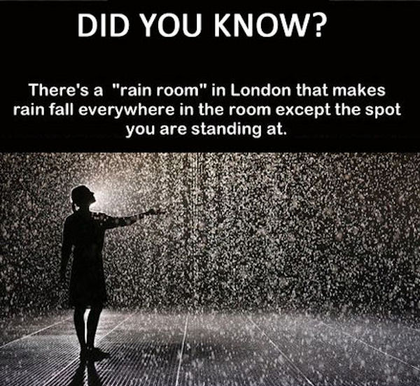 Quotes For Teenagers Room The London Rain Room P...