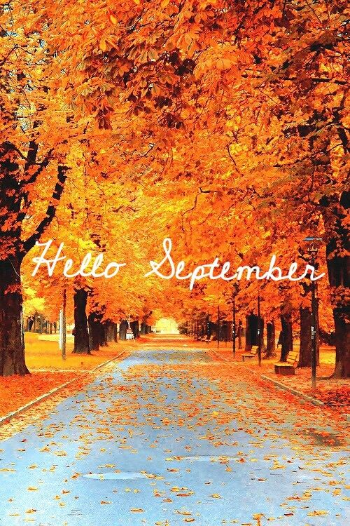 Hello September With Autumn Trees Pictures Photos And