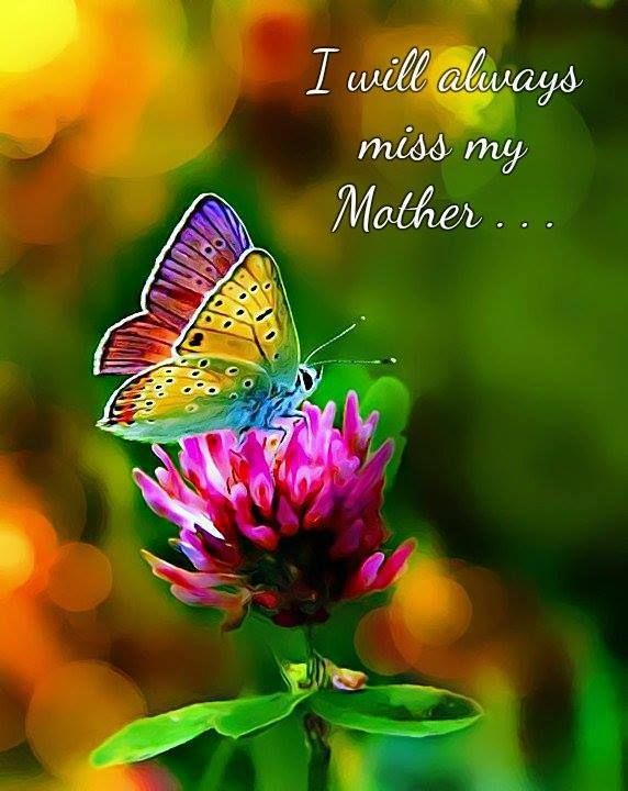 Kinder Garden: I Will Always Miss My Mother Pictures, Photos, And Images