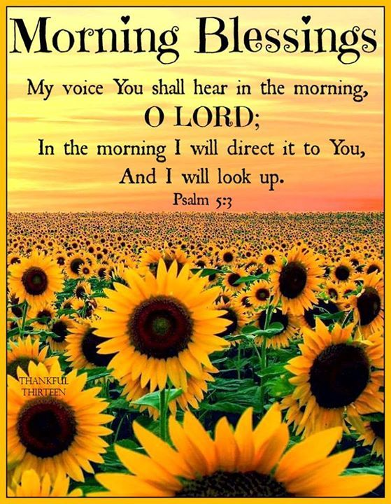 Good Morning Quotes Blessings: Religious Morning Blessings Quote Pictures, Photos, And