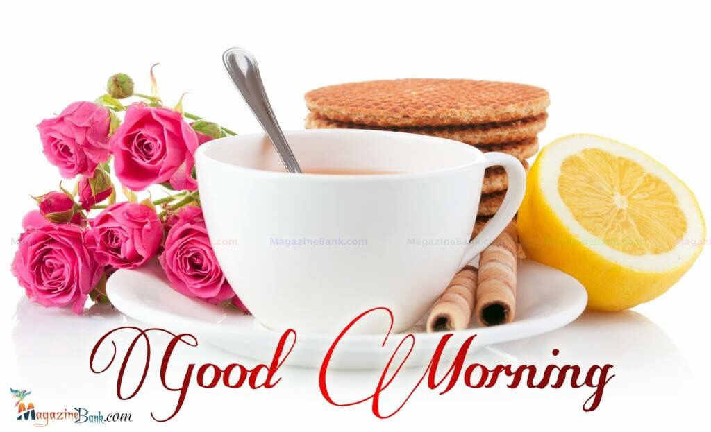 Good Morning Coffee And Roses Pictures Photos And Images For