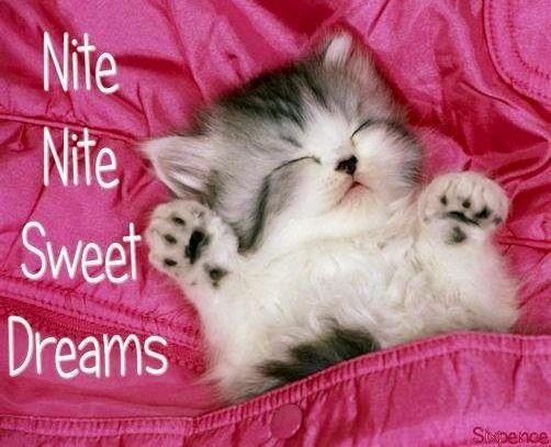 Sweet Dreams Bilder