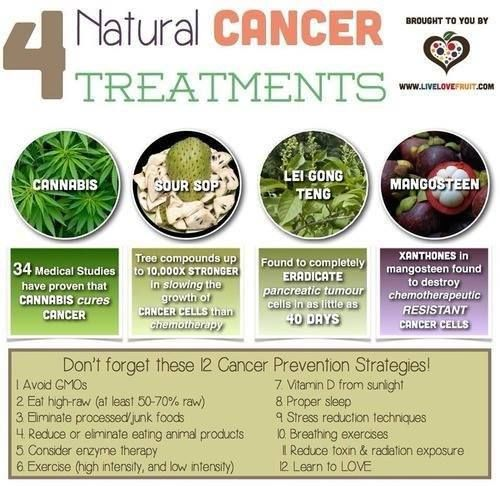 4 Natural Cancer Treatments Pictures, Photos, and Images for