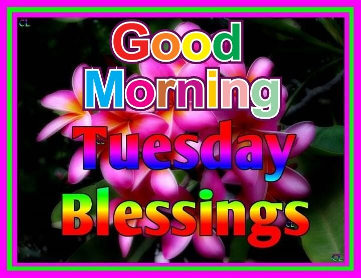 Good Morning Tuesday Blessing Images : Tuesday blessings pictures photos and images for facebook