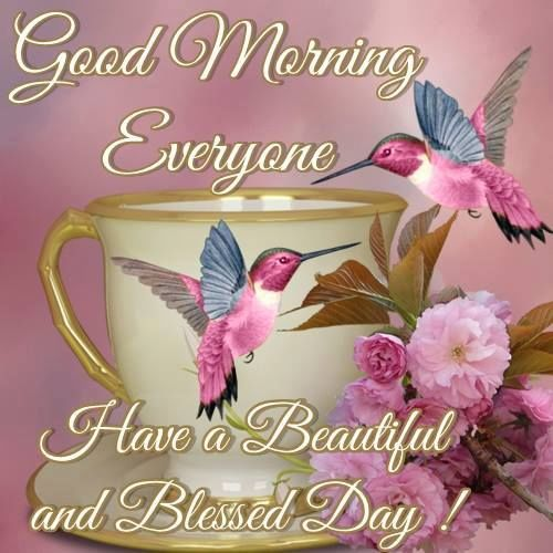 Good Morning Everyone Have A Good Day : Good morning everyone have a blessed day pictures photos