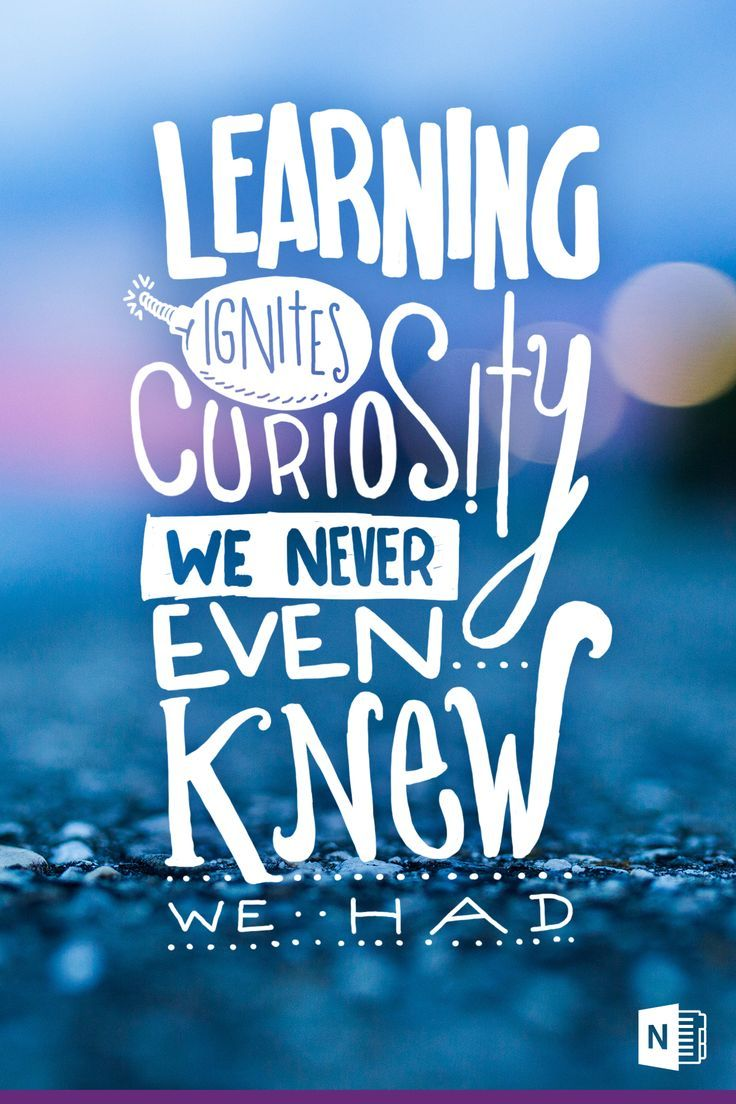 learning ignites curiosity we never even knew we had