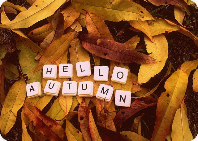 Superb Hello Autumn Pictures, Photos, And Images For Facebook, Tumblr, Pinterest,  An