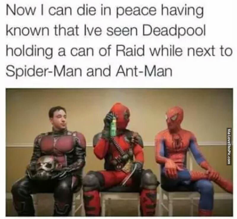 Deadpool Holding A Can Of Raid Next To Spider Man And Ant Man Pictures