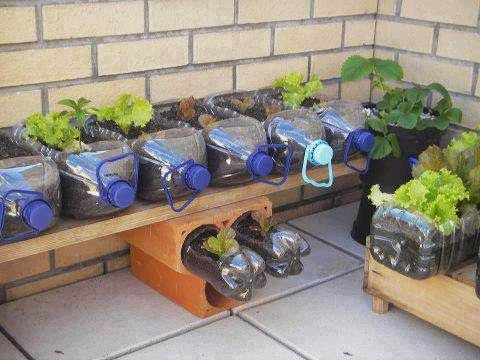 Plastic Bottle Garden Idea