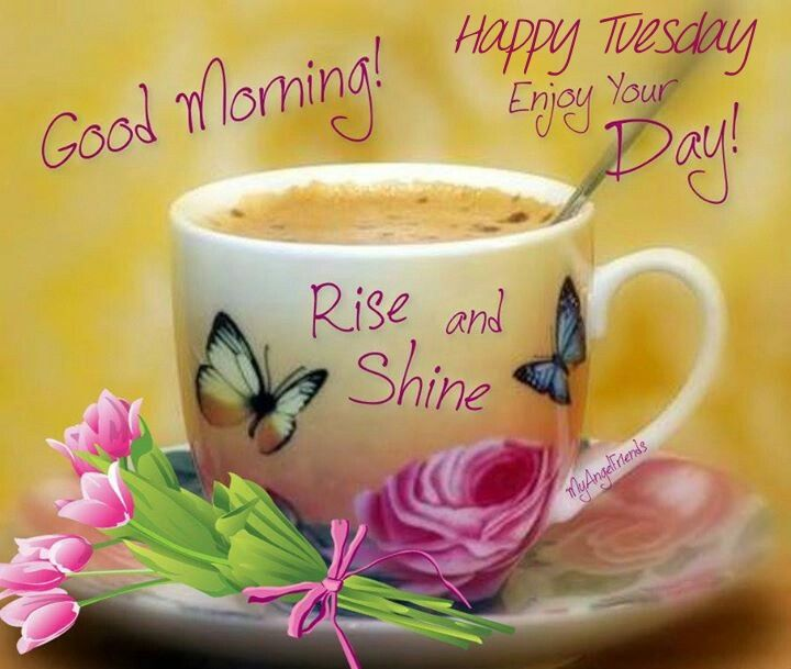 Good Morning Tuesday Images : Good morning happy tuesday pictures photos and images
