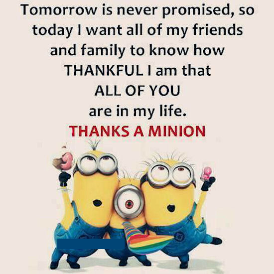 Charming Thankful To All My Friends Minion Quote