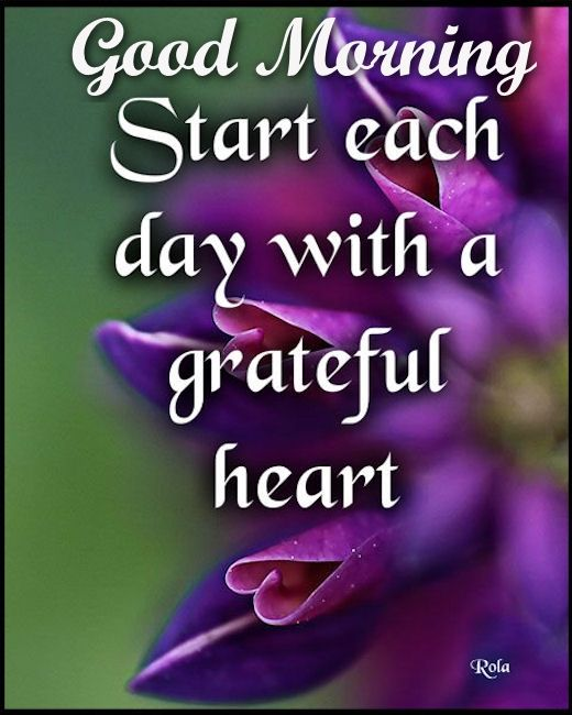 Each Morning We Are Born Again What We Do Today Is What: Good Morning Start Each Day With A Grateful Heart Pictures