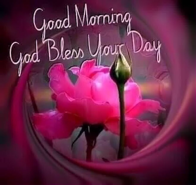 Good Morning God Bless Your Day : The gallery for gt good morning god bless your day