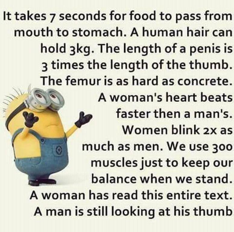 minion funny quotes of the week