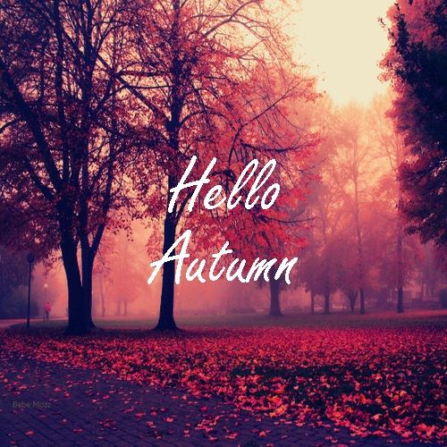Hello Autumn Pictures, Photos, and Images for Facebook ...