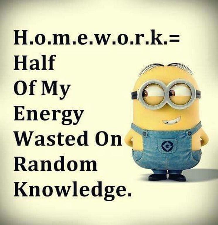 Funny homework images