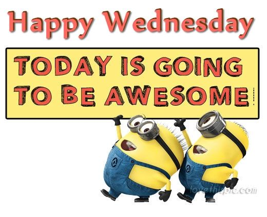 happy wednesday today is going to be awesome pictures photos and