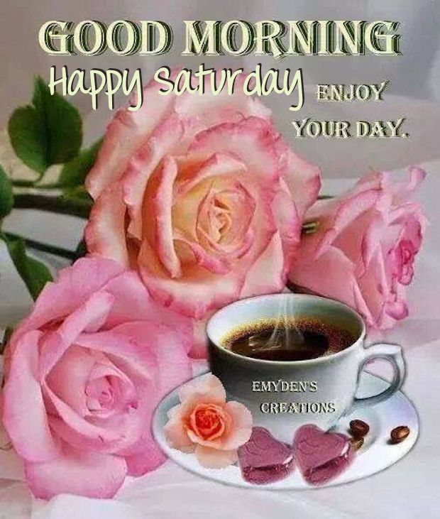 Good Morning Happy Saturday Enjoy Your Day Pictures