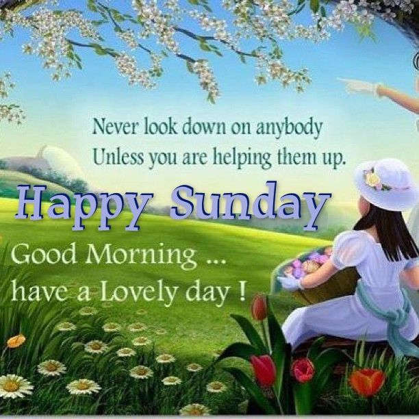 Good Morning And Happy Sunday Love Message : Happy sunday good morning have a lovely day pictures