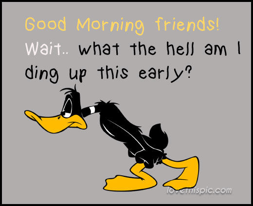 Good Morning Friends Pictures Photos And Images For