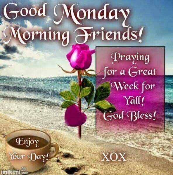 good monday morning friends pictures photos and images