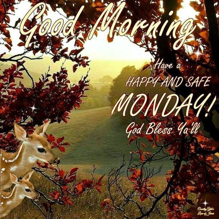 Good morning have a safe happy monday pictures photos - Good morning monday images ...