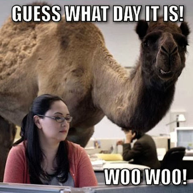 Guess What Day It Is Woo Woo Pictures, Photos, and Images