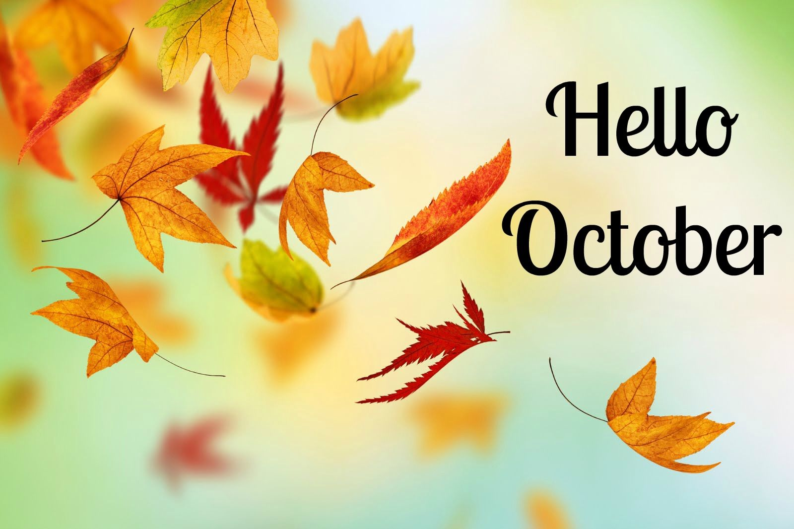Hello October Quote With Falling Autumn Leaves