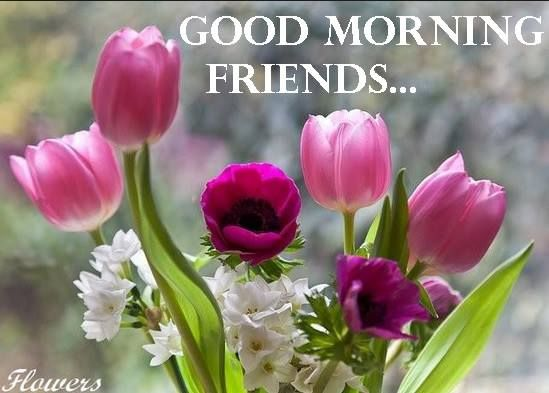 Buy Morning Good friend with roses pictures pictures trends
