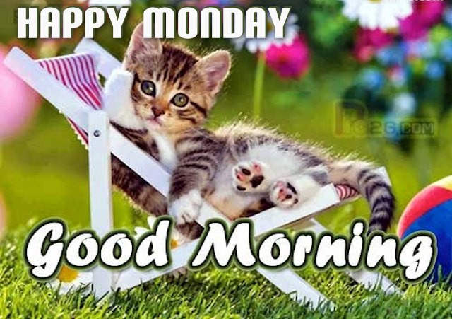 Happy monday good morning cute quote pictures photos and images for