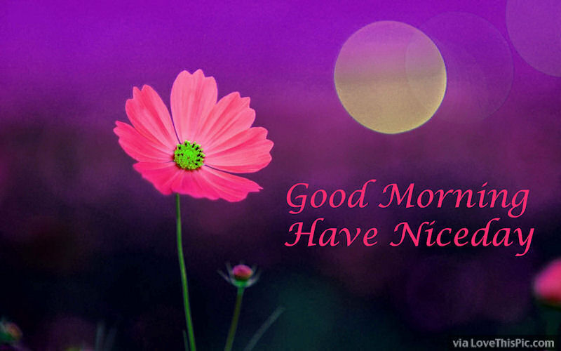 Good Morning Wishes Free Images Download. Good morning WhatsApp message