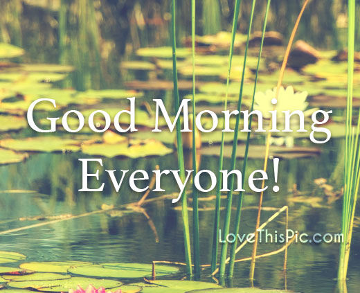 Good Morning Everyone Band : Good morning everyone pictures photos and images for