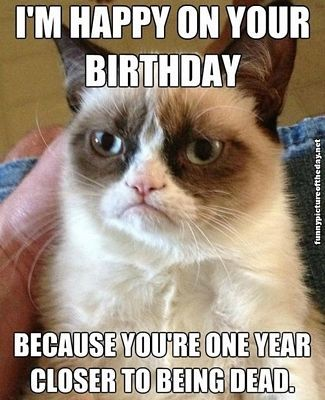 Grumpy Cat Funny Birthday Meme
