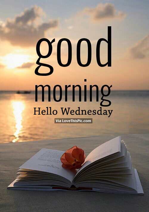 Good Morning Hello Wednesday Pictures Photos And Images For Facebook Tumblr Pinterest And