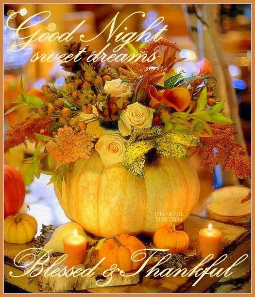 Good Night Sweet Dreams Autumn Quote Pictures, Photos, And