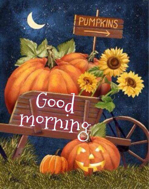 Halloween Good Morning Quote Pictures, Photos, and Images
