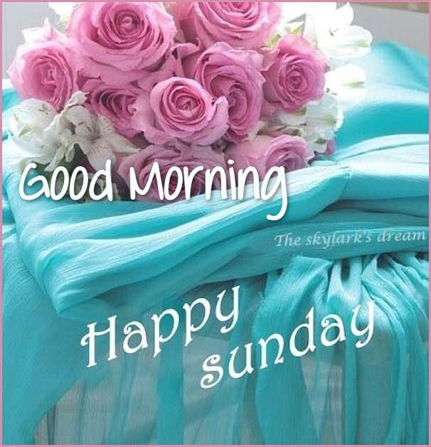 Good Morning And Happy Sunday Quotes : Pretty good morning happy sunday quote pictures photos