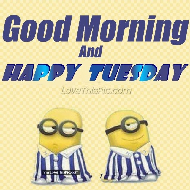 Good Morning Happy Tuesday Minion Quote Pictures, Photos ...