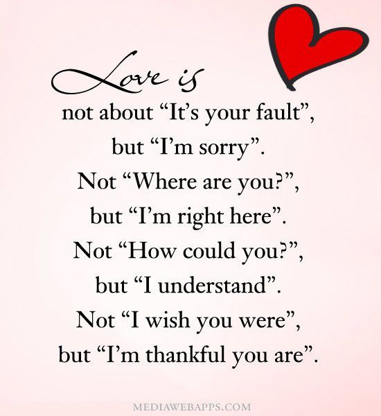 Sorry and I Love You Quotes