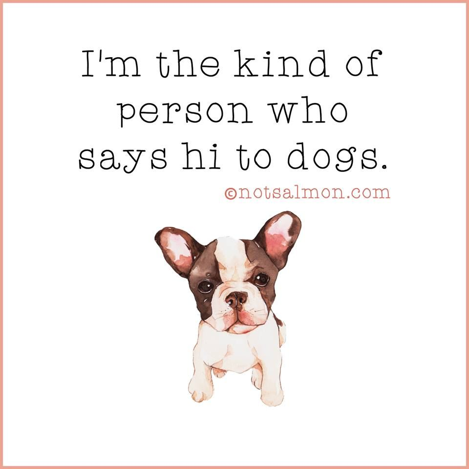 I M The Kind Of Person That Says Hi To Dogs Pictures