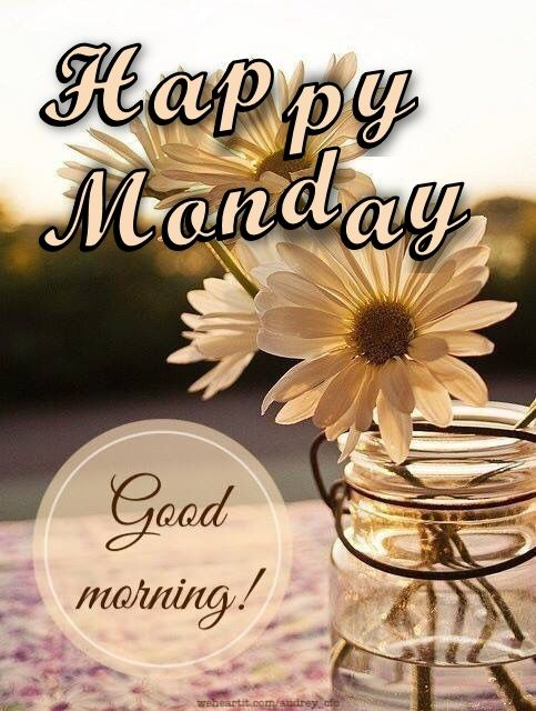 Happy monday good morning with fowers pictures photos - Good morning monday images ...