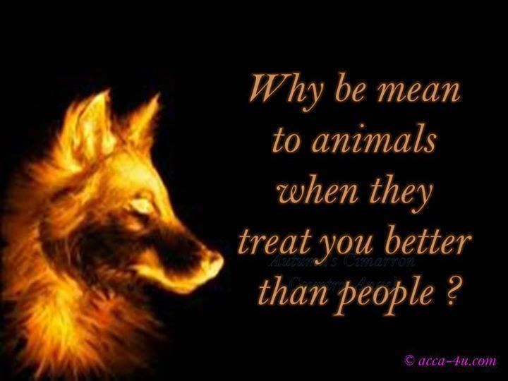 animals and humans shoul be treated Depends on the meaning of 'same' if you mean should animals be treated with love, kindness, fed well, given room to run and play, etc, then yes.