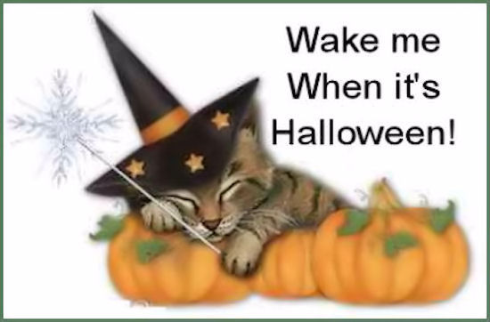 025b05bec0 Wake Me Up When It Is Halloween Pictures