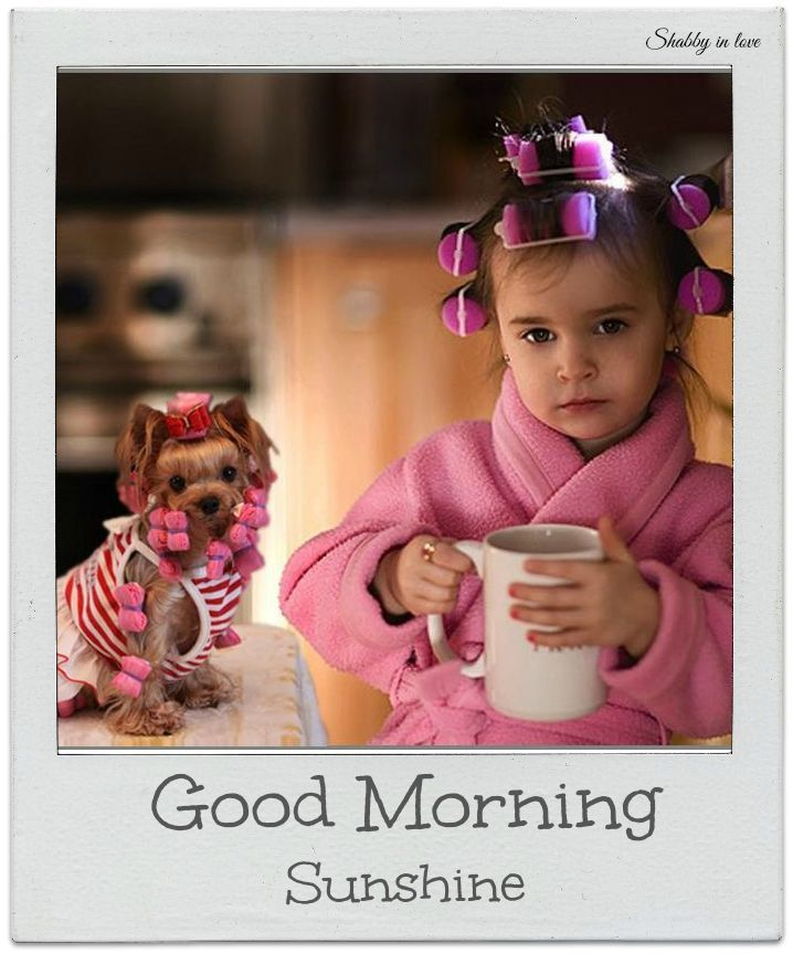 Good Morning Sunshine Facebook : Cute good morning sunshine quote pictures photos and
