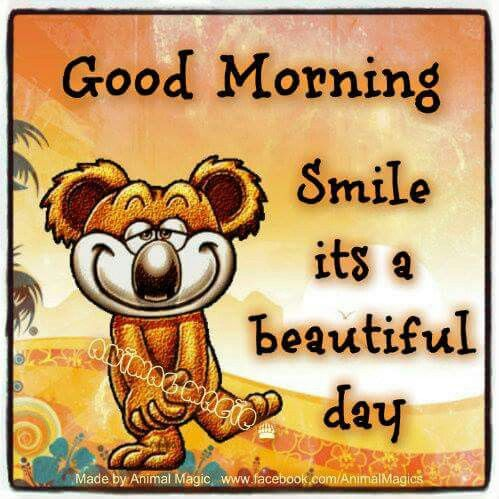 Good Morning Smile It Is A Beautiful Day Pictures Photos