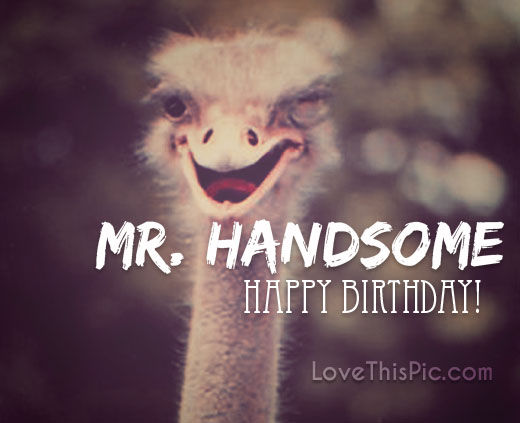 Happy Birthday Mr Handsome Pictures Photos And Images