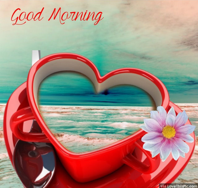 Good Morning Heart Cup Pictures, Photos, And Images For