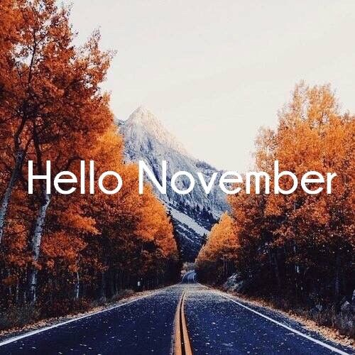 Hello November With Orange Trees Pictures, Photos, And
