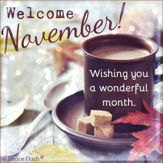 Image result for Welcome November